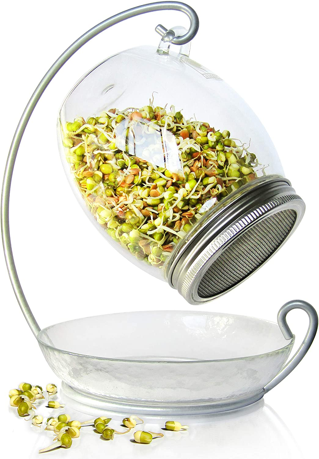 Premium Sprouting Kit Includes Unique 30 oz Wide Mouth Sprouting Jar, Stand, Tray and Sprouting Lid | Decorative Indoor Seed Sprouter and Germinator (1 Kit)