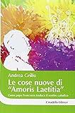 Le cose nuove di «Amoris laetitia». Come papa Francesco traduce il sentire cattolico