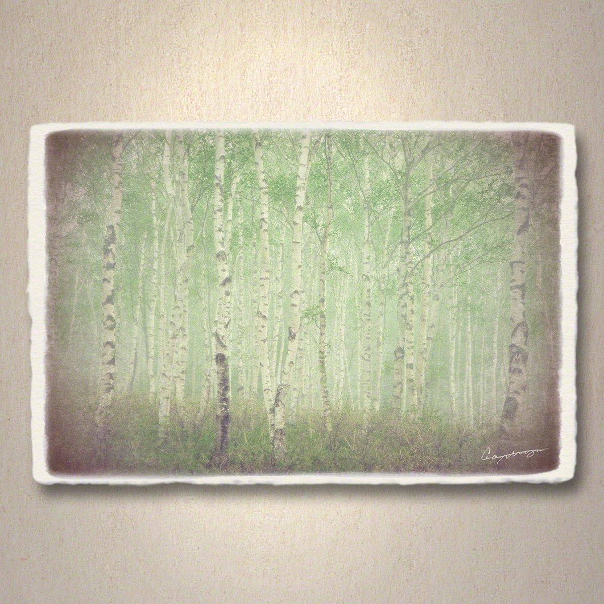 和紙 アートパネル 「霧の中の新緑の白樺林」 (68x45cm) 絵 絵画 壁掛け 壁飾り インテリア アート B07F15RYJR 16.アートパネル(長辺68cm) 48000円 霧の中の新緑の白樺林 霧の中の新緑の白樺林 16.アートパネル(長辺68cm) 48000円