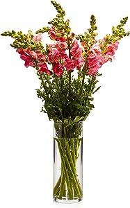 Libbey Cylinder Vase, 9-inch, Set of 2