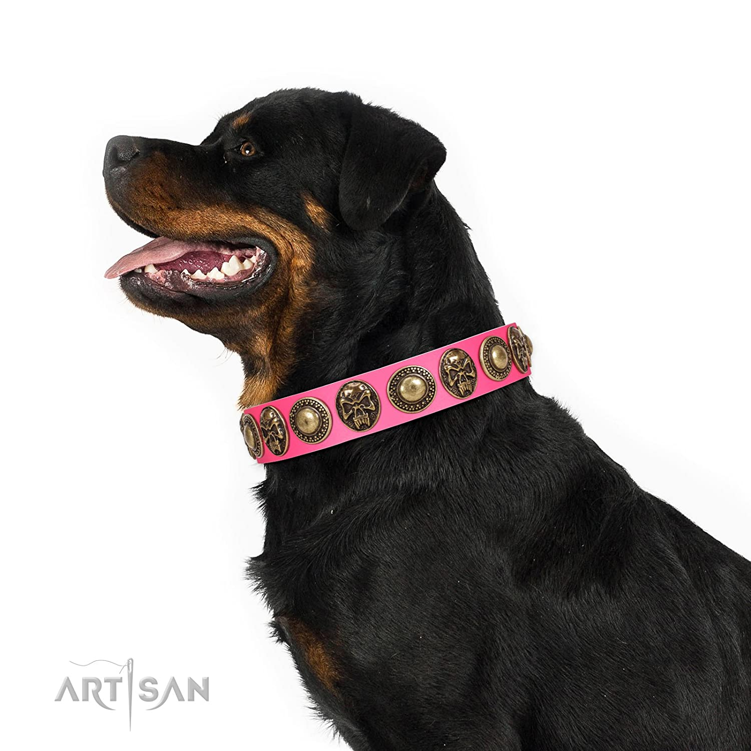 Fits for 31 inch (78cm) dog's neck size 31 inch FDT Artisan Pink Leather Dog Collar with Elegant Conchos and Medallions with Skulls Two Extremes Gift Box Included
