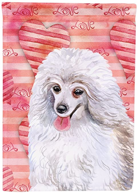 Carolines Treasures Bb9770chf Medium White Poodle Love Decorative Canvas Outdoor Flag House Size Multicolor