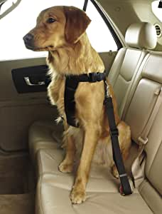 Guardian Gear Ride Right Classic Car Harnesses - Sturdy Nylon Harnesses for Dogs - Large, Black