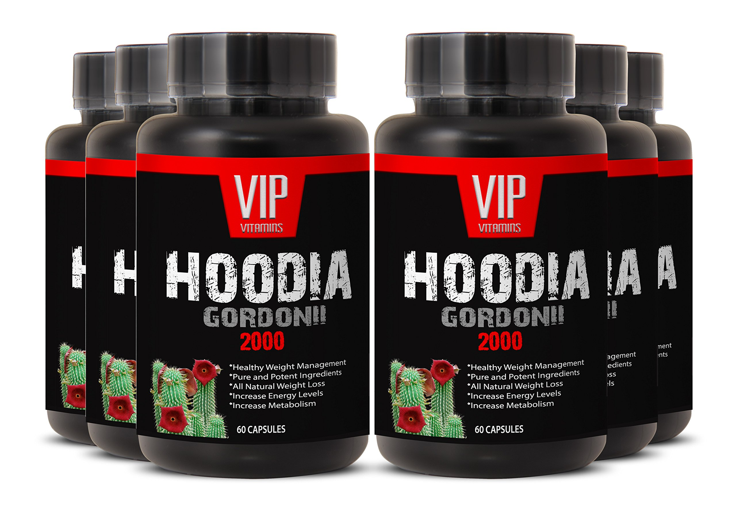 Hoodia Gordonii Best for Weight Loss - Pure Hoodia Gordonii Extract 2000mg - Hoodia Gordonii Highly Effective Appetite Suppressing (6 bottles 360 capsules)