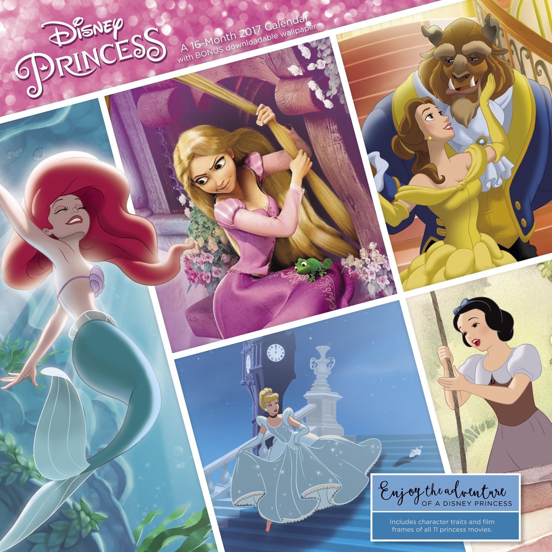 Disney Princess Wall Calendar (2017) by Day Dream