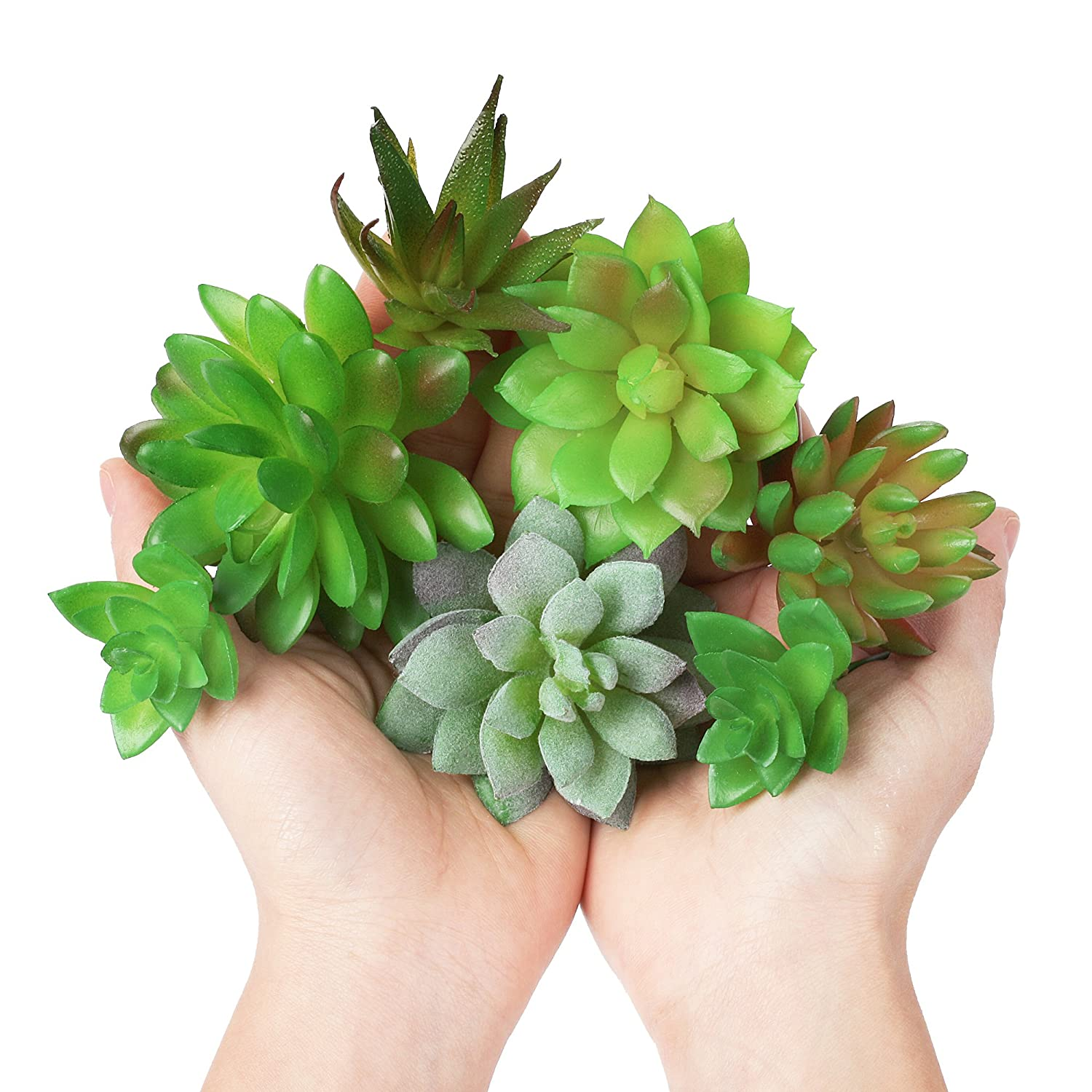 or as Gifts HiperSpeed Party CayTre Fake Artificial Succulents Plant 7-Pc Bulk Faux Succulent Unpotted Picks Plants for Home Decor- Realistic Decorations for Office Table Terrarium
