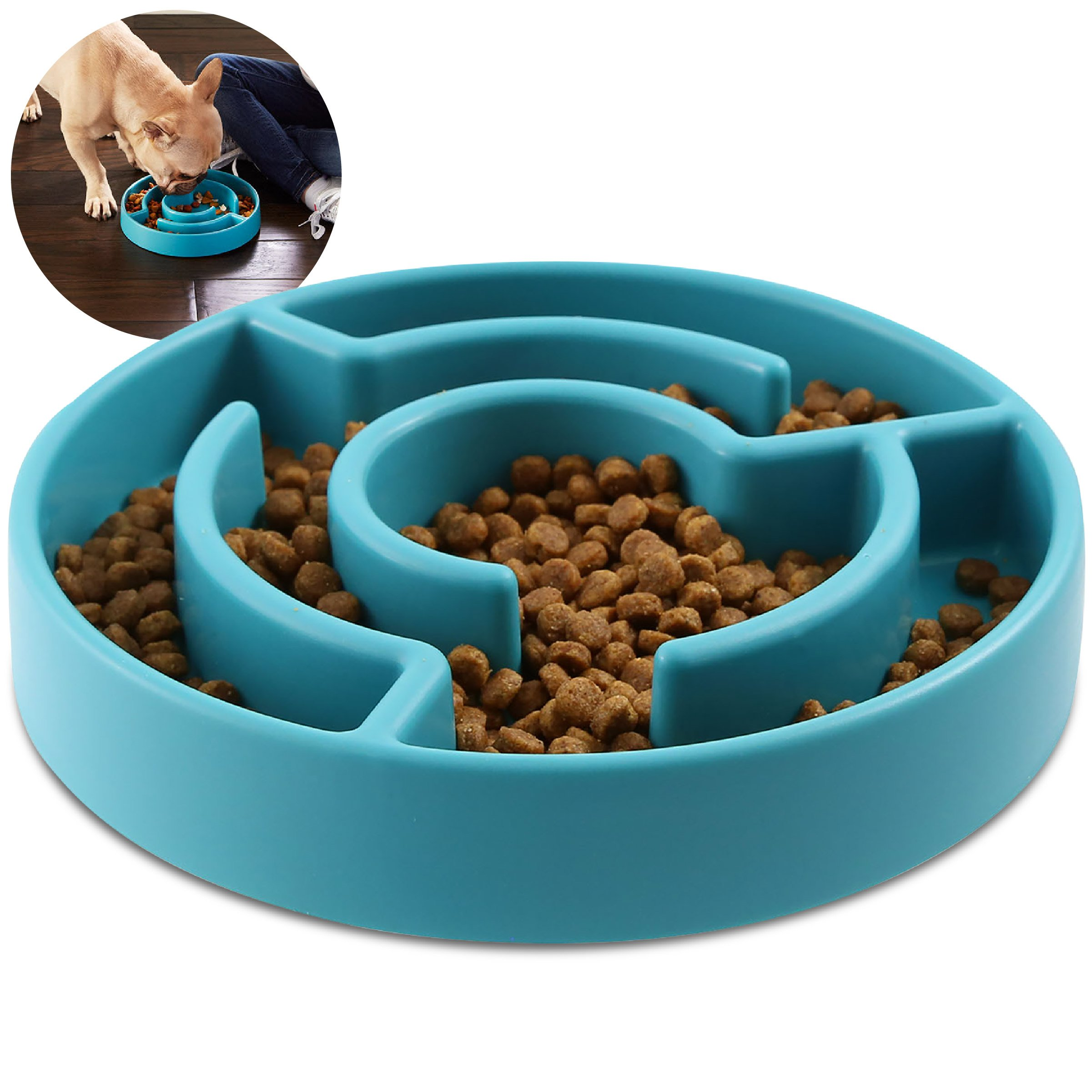 ANIMAL PLANET 9-Inch Slow Maze Feeder for Small/Medium Dogs, Aids in Digestive Health, Prevents Bloating from Fast Eating & Obesity, Rubber Grip Bottom, Fits 2 Cups of Kibble for Calorie Control, TEAL