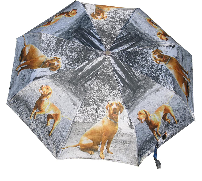 Vizsla GerShep Golden Glddoodle Daschund Cocker Lab Horse auto open umbrella
