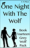 One Night With The Wolf: Book Fourteen - Grey Wolf Pack Romance Novellas