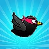 Simple birds: fun and cool adventure ninja run for boys girls kids teens adults