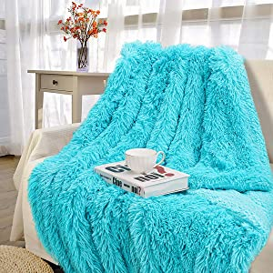 "Pacapet Soft Fuzzy Throw Blanket for Couch, Shaggy Sherpa Fleece Blanket for Bed, Washable & Lightweight, Fluffy Faux Fur Blanket for Bedroom, Sofa, Home Decor, 60""x80""Twin Size, Teal"
