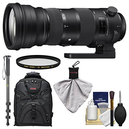 Review Sigma 150-600mm f/5.0-6.3 Sports