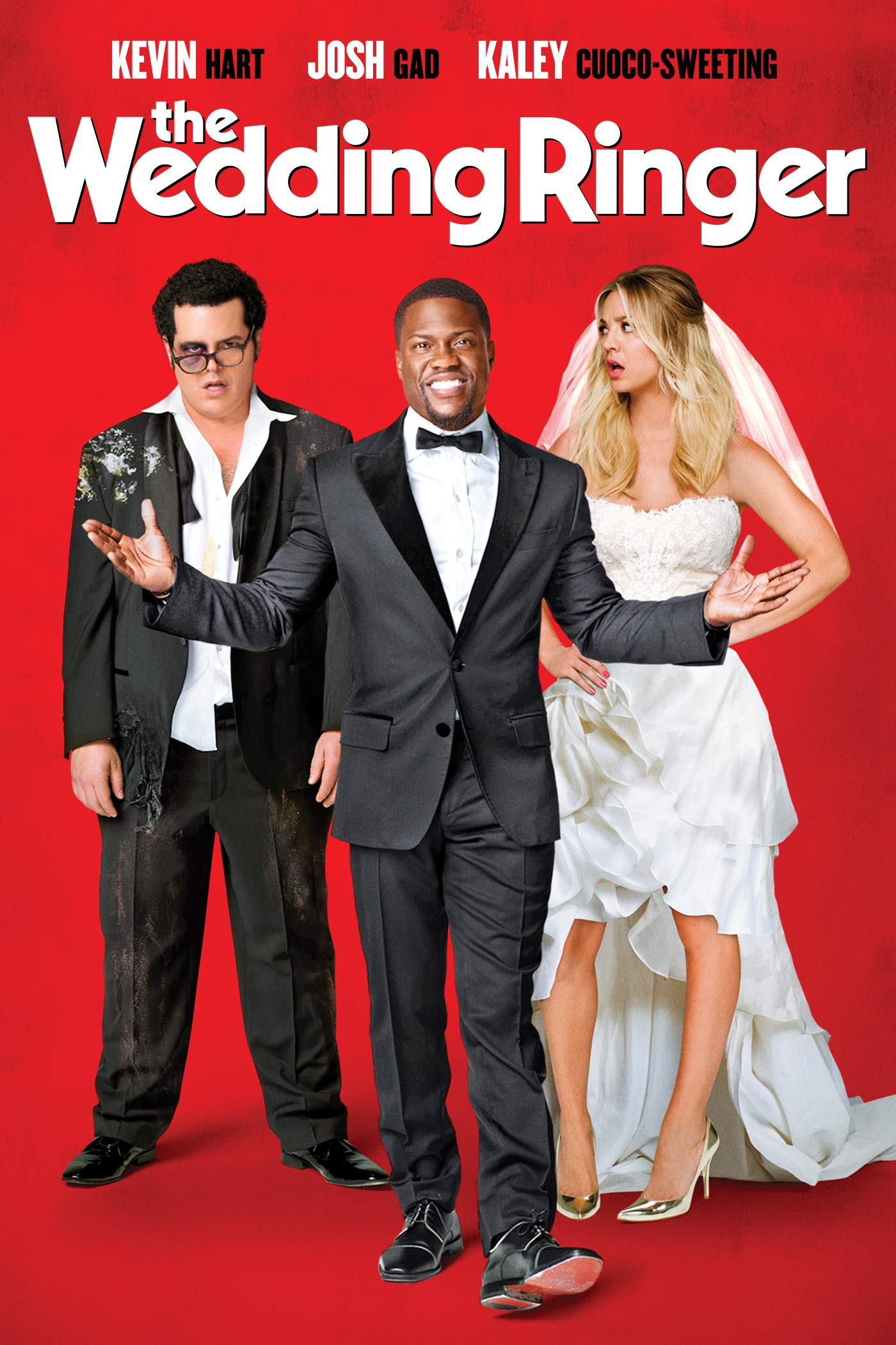 Watch The Wedding Ringer  Prime Video