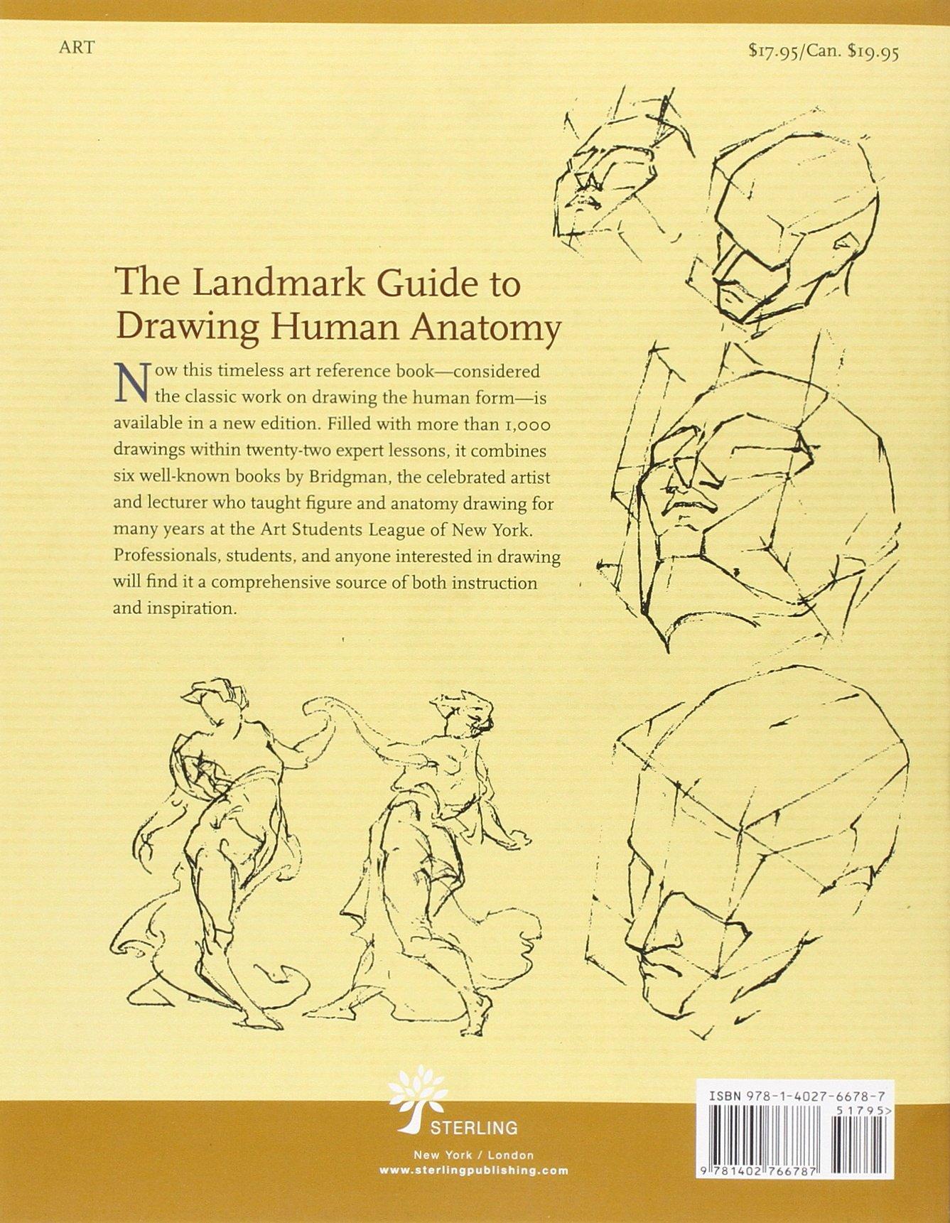 morpho anatomie artistique michel lauricella pdf