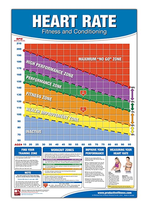Amazon Fitness Heart Rate Chart Poster Training Zone Chart