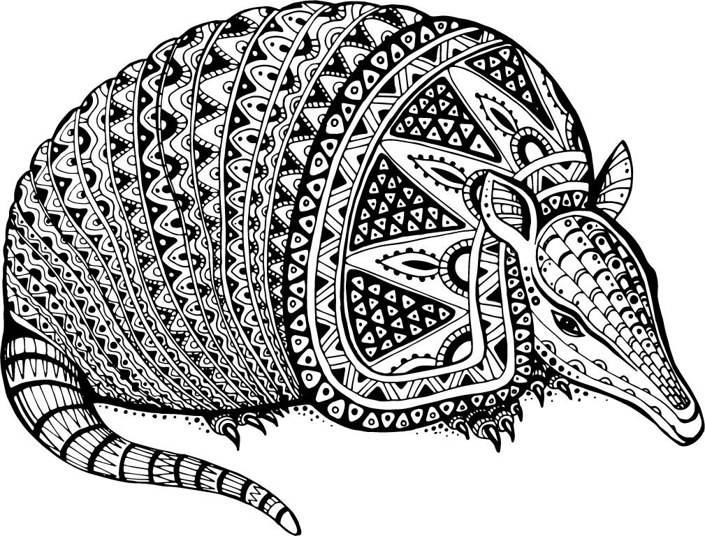 Armadillo Totem Animal Home Decal Vinyl Sticker 14'' X 11''