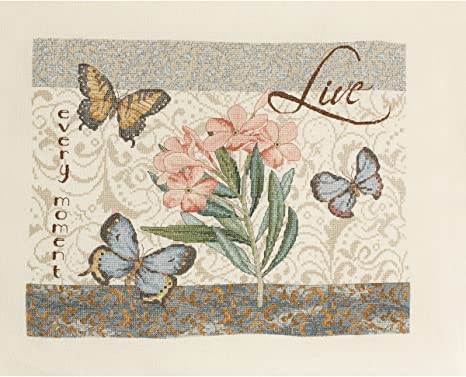 46471 Sunny Bucilla Counted Cross Stitch Kit 11 by 14-Inch