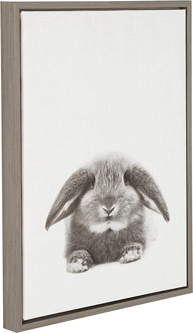 Kate And Laurel Sylvie Rabbit Black And White Portrait Gray Framed Canvas Wall Art By Simon Te Tai Home Kitchen Amazon Com