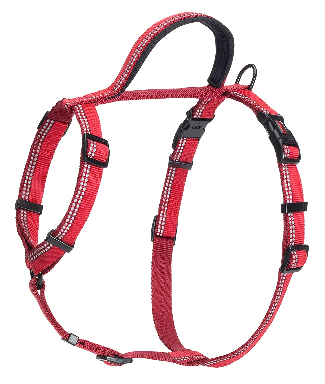 Red Medium Red Medium Company of Animals Halti Walking Harness for Dogs, Medium, Red