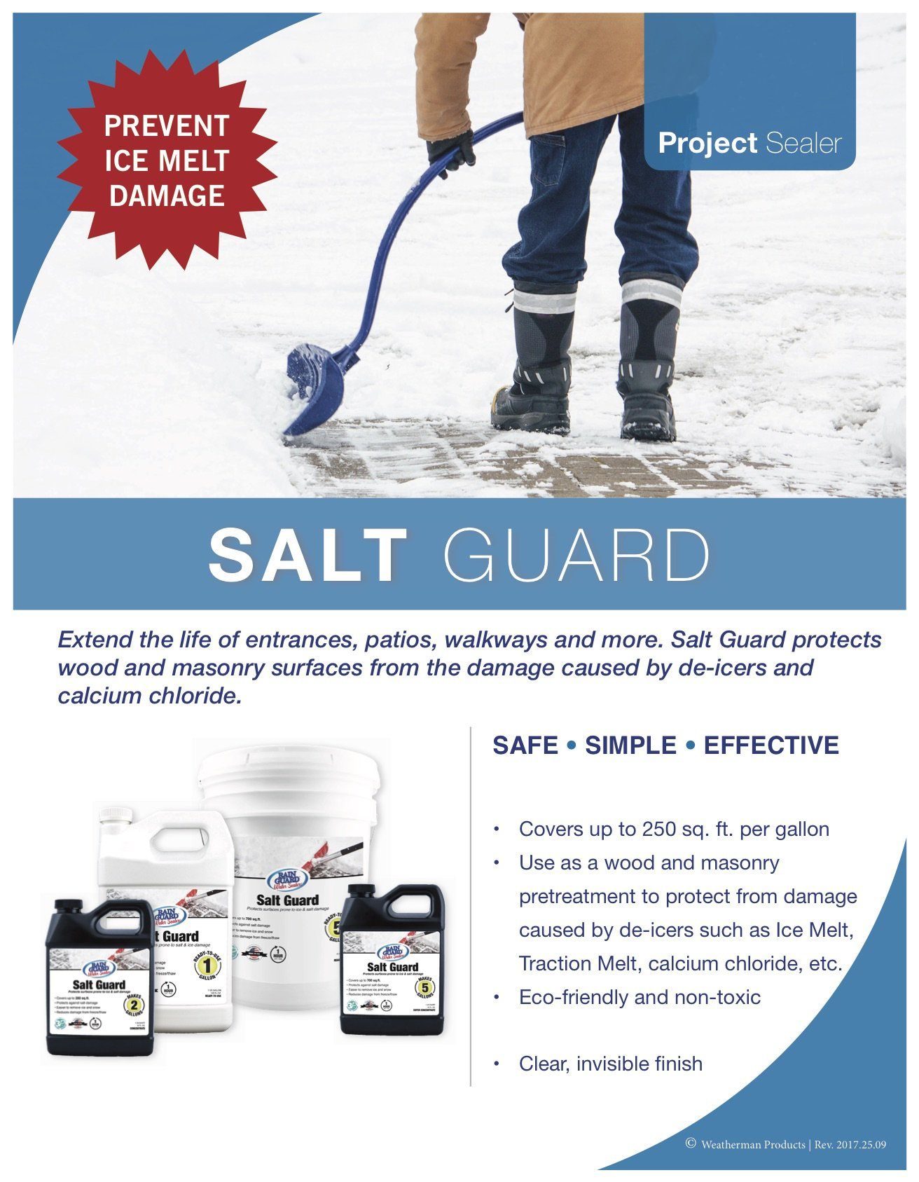 Rainguard International SP-1006 Ready to Use 1 gal Premium Grade Salt Guard, Protection from Road Salt and Ice Damage, Clear