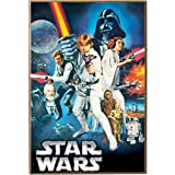 Silver Buffalo SW4436 Star Wars Episode-4 Wood Wall Art Plaque, 13 by 19-Inch