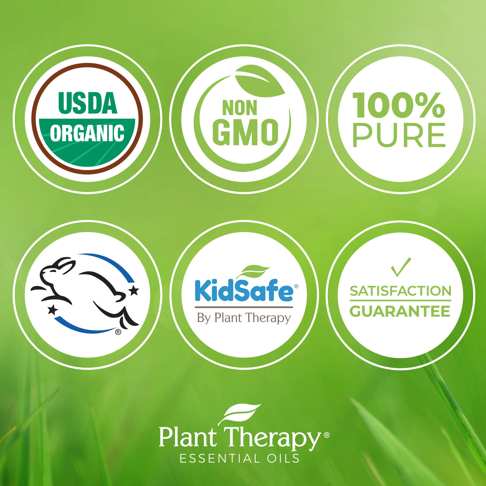 Plant Therapy Citronella Organic Essential Oil   100% Pure, USDA Certified Organic, Undiluted, Natural Aromatherapy, Therapeutic Grade   100 Milliliter (3.3 Ounce) by Plant Therapy (Image #3)