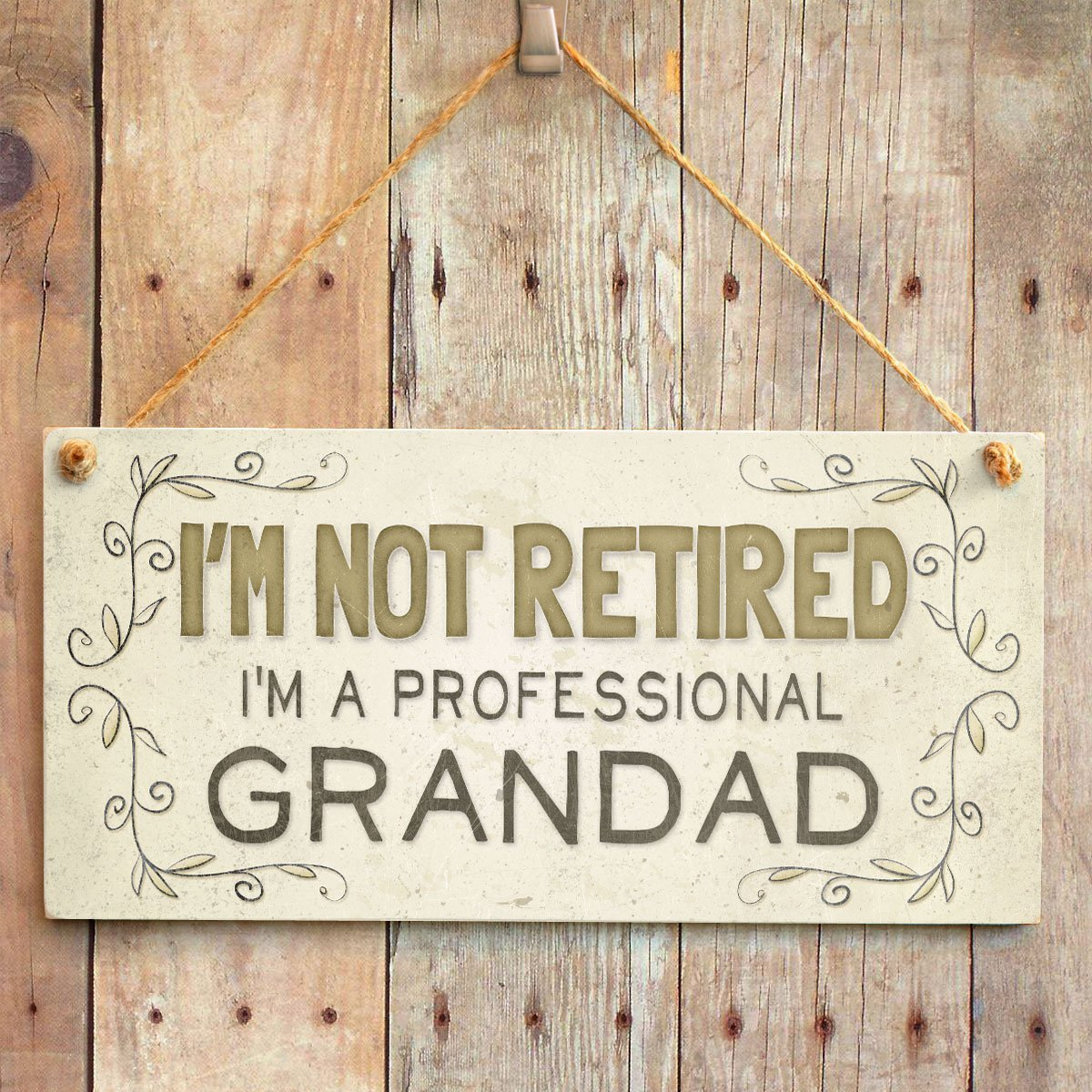 Meijiafei I/'m Not Retired I/'m A Professional Grandad Home Accessory Gift Sign//Plaque Cute Retirement Gift for Grandads 10x5