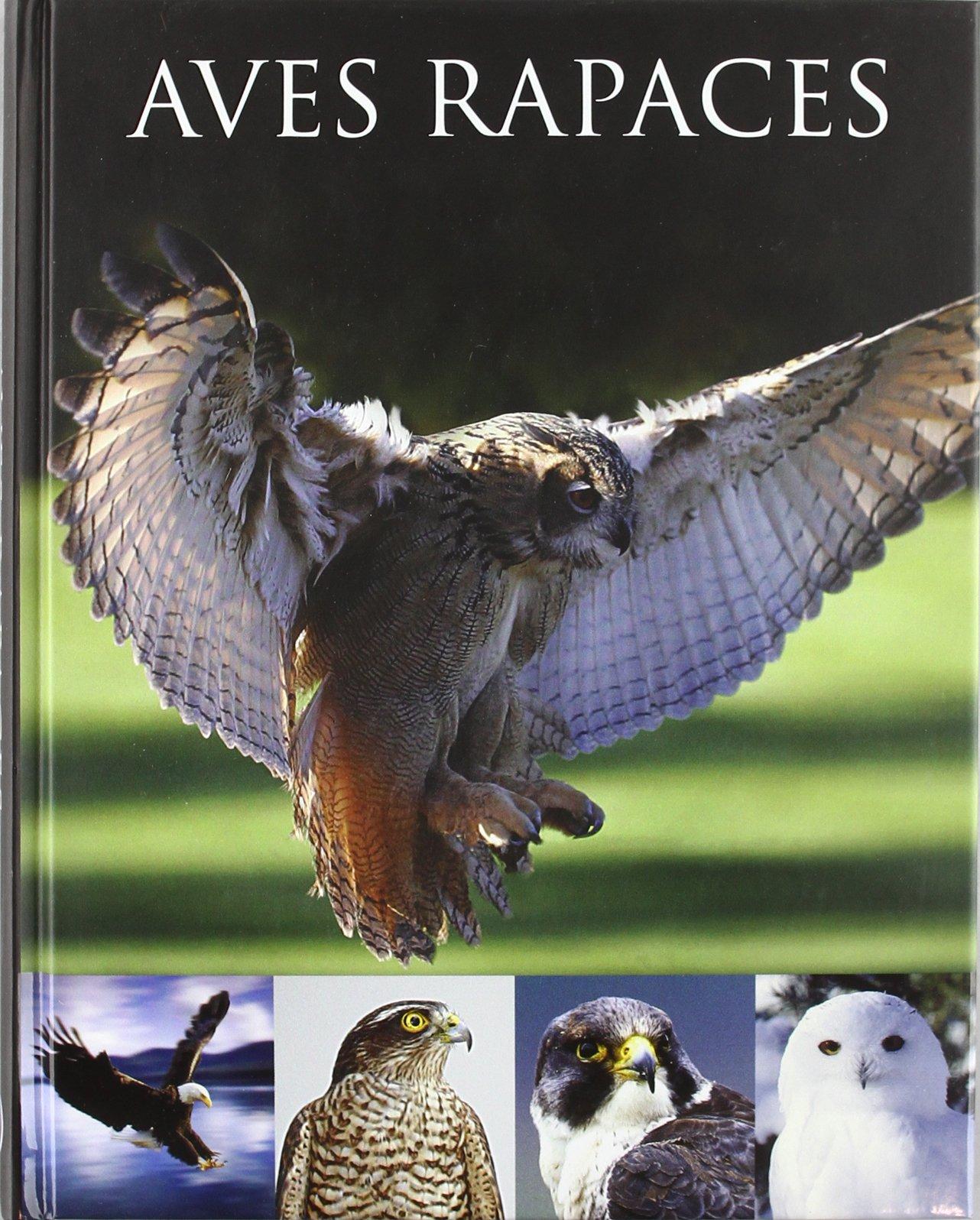 Aves rapaces: Amazon.es: Frost, Paul: Libros