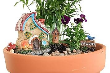 The Crafty Corner Company   Fairy Go Round Fairy Garden Set   5 Piece  Starter Set