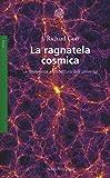 La ragnatela cosmica. La misteriosa architettura dell'universo: 1