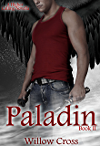 Paladin (A Higher Calling Book 2)