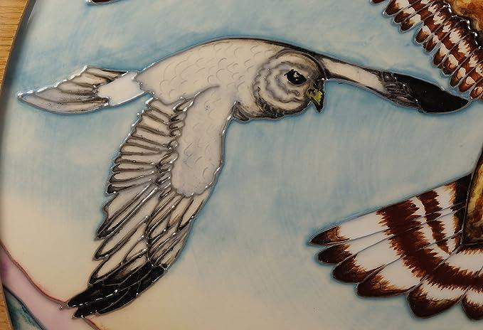 Un Moorcroft cerámica RSPB Skydancer Hen Harrier pájaros pared con marco placa 1st 47/50: Amazon.es: Hogar