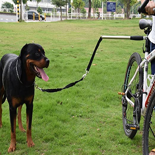 Lactancia Cool Dog Plus de Hands Free perro bicicleta Exerciser ...