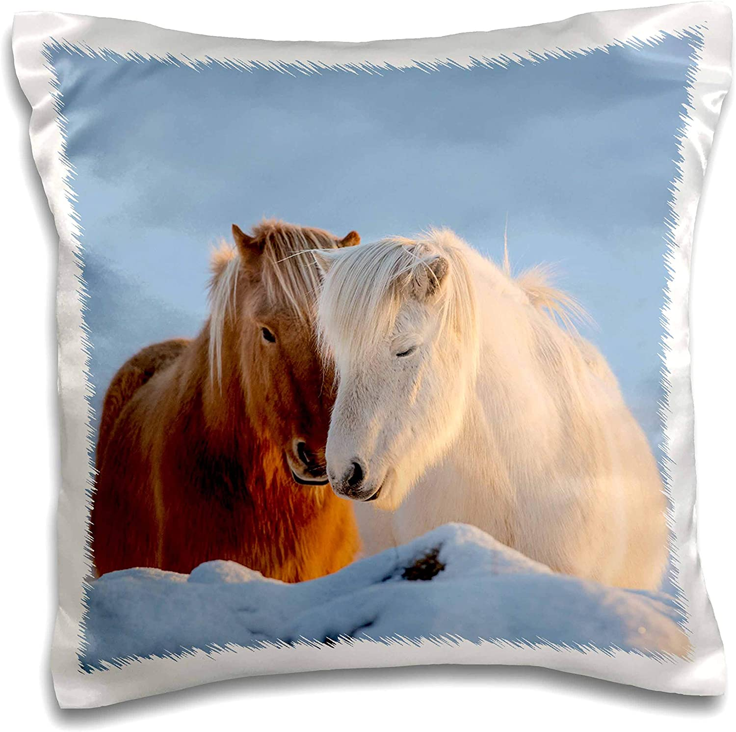Amazon Com 3drose Danita Delimont Horses Icelandic Horses In South Iceland 16x16 Inch Pillow Case Pc 313639 1 Kitchen Dining