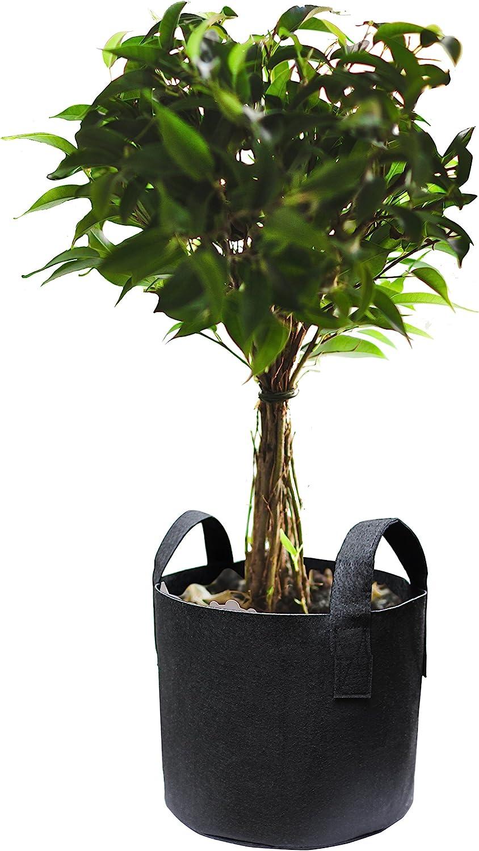 Gardzen 5-Pack 5 Gallons Grow Bags Aeration Fabric Pots with Handles