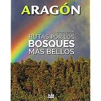 Rutas por los bosques más bellos (Aragón)