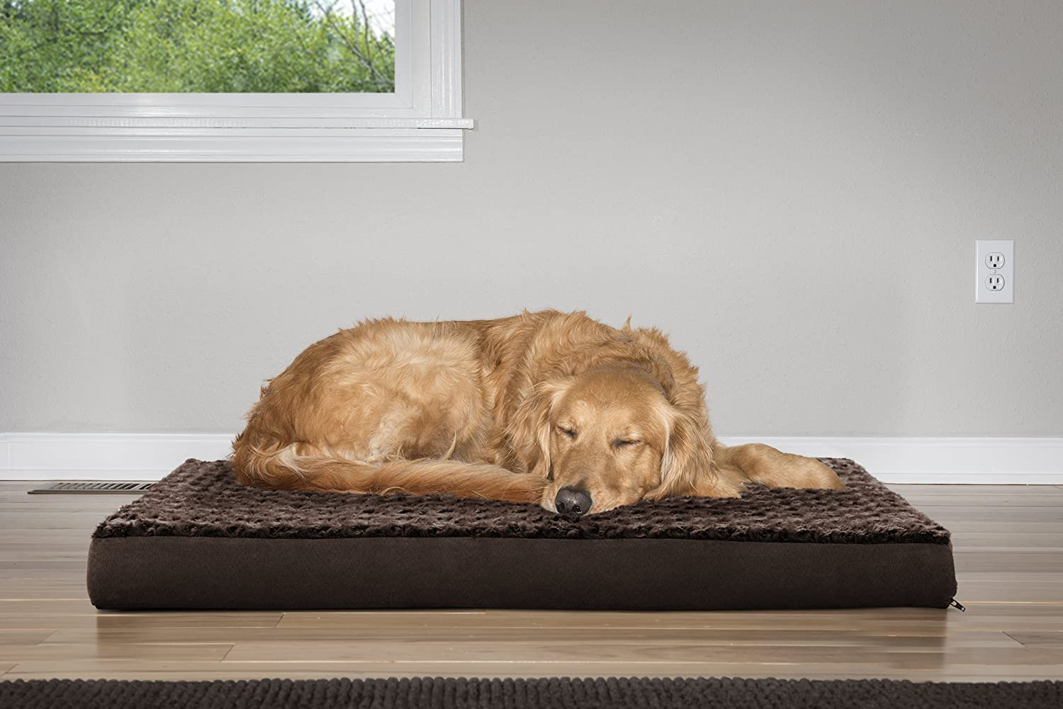 best-rated-dog-beds