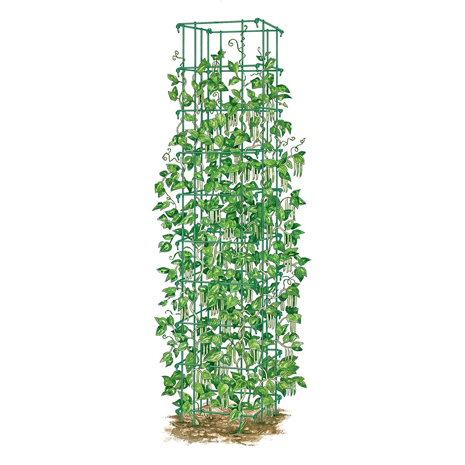 Amazon Bean Tower Heavy Gauge Bean Trellis Trellises