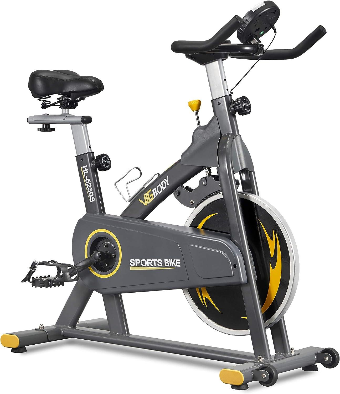 best spinning bike under 500