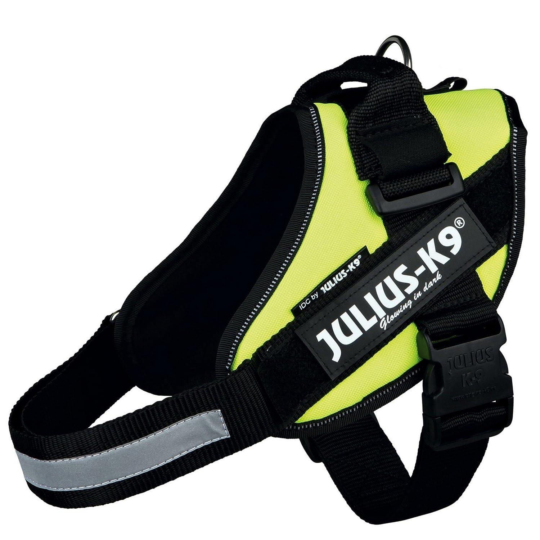 Julius-K9 16IDC-P-0 IDC Power Harness, Tamaño 0, Negro K9-Sport
