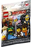 LEGO Ninjago Movie Minifigure - Blind Bag Pack (71019)
