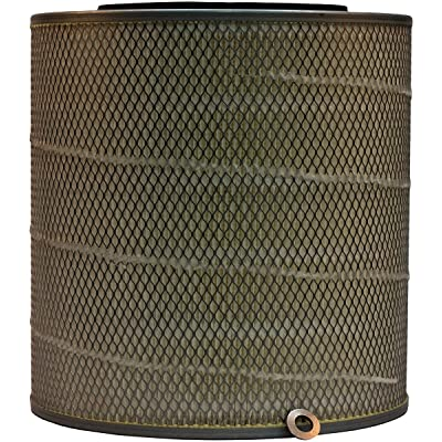 Luber-finer LAF8971 Heavy Duty Air Filter: Automotive