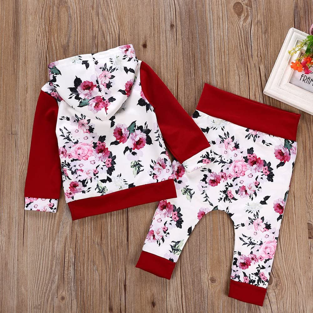 Winter Baby Outfits,Fineser Clearance Sale!!2Pcs Newborn Baby Boys Girls Floral Print Hooded Pullover Tops+Pants Outfits Set