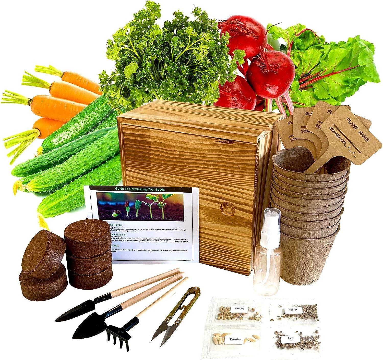 Hand-Mart 4 Vegetable Seeds with Planter Box Starter Kit Indoor, Carrot Cucumber Beet Caraway, Including Soil, Pots, 3 Garden-Tool, Pruner, Sprayer, Plant Labels, DIY Craft for Kids Adults