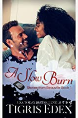 A Slow Burn (Stories from Beauville Book 1) Kindle Edition