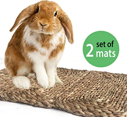 Water-Resistant Edible Chew Toy Pet-Safe Treat Sore Hocks Handmade Woven Play Bed Seagrass Mat Protect Paws from Wire Cage Eco-Friendly Couch Add in Cage or on Floor