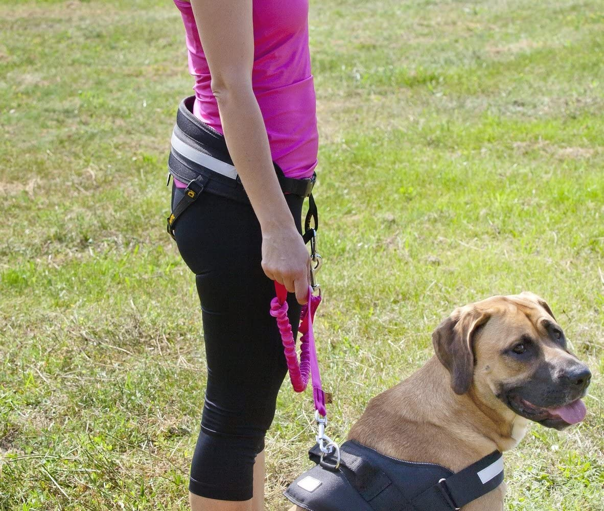 Jogging Dingo Universal Shock-Absorber Canicross Leash with 2 Hooks For Running Training Sport with Dog Handsfree Lead Pink 14697