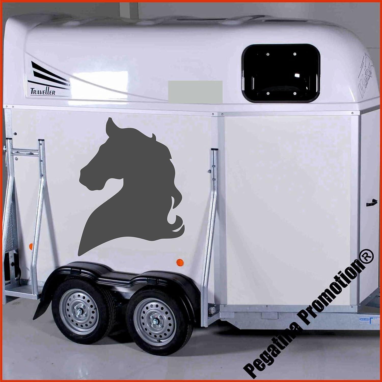 Pferdekopf einfach Aufkleber Anhänger Pferd Anhänger ca. 80x60cm Pegatina Promotion ®