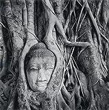 Holding Buddha, Ayutthaya, Thailand 2000