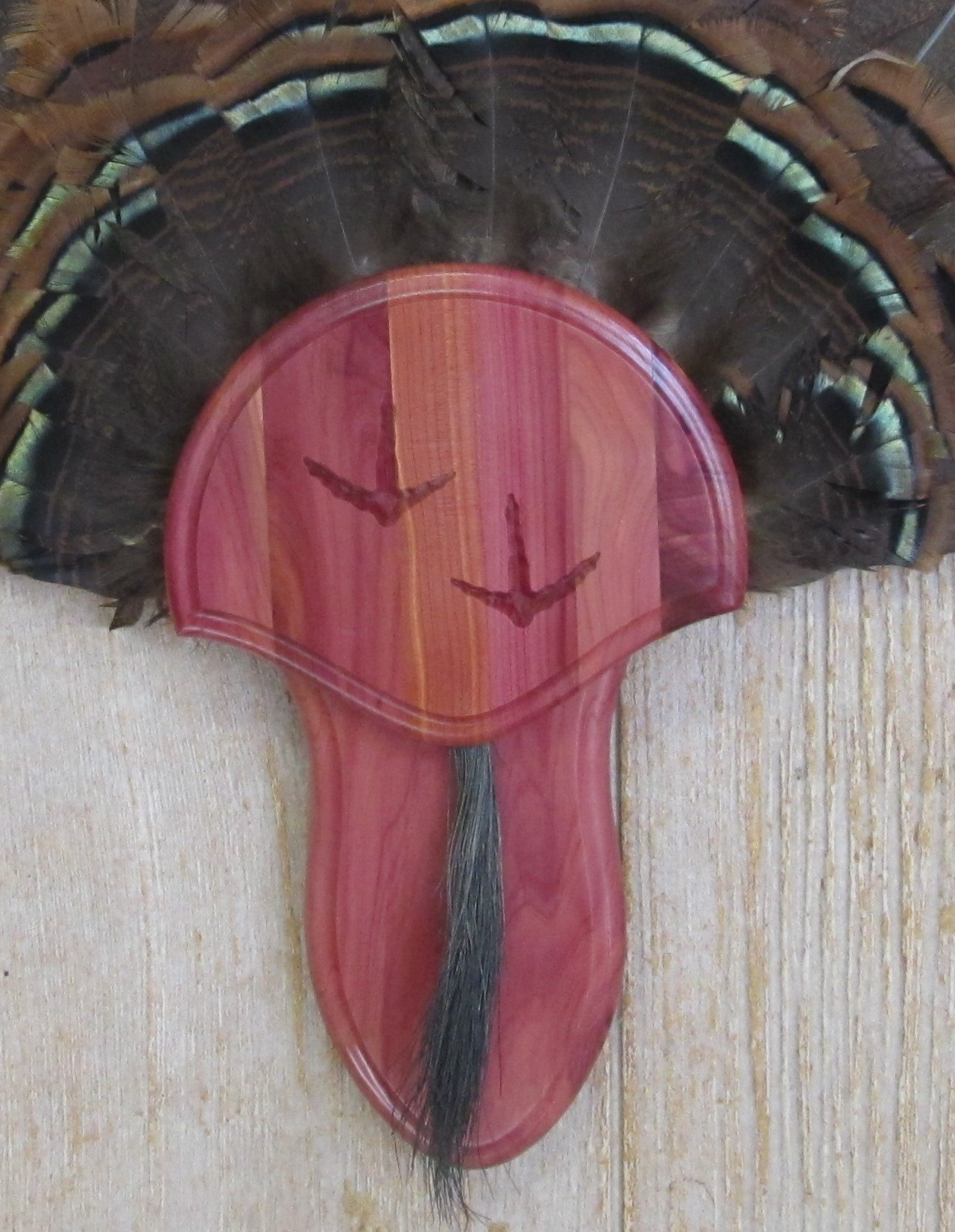 Taxidermists Woodshop The Cedar Carved Turkey Mounting Kit with Beard Plate -02